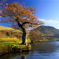 Autumn Tints of Lake District & Yorkshire Dales