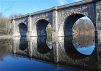 Barton Grange Garden Centre & Lune Aqueduct Cruise